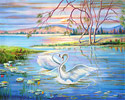 Swan's - Landscape Fine art Giclee print on canvas